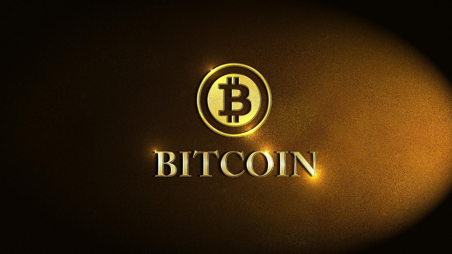Bitcoin Profit und Social Media